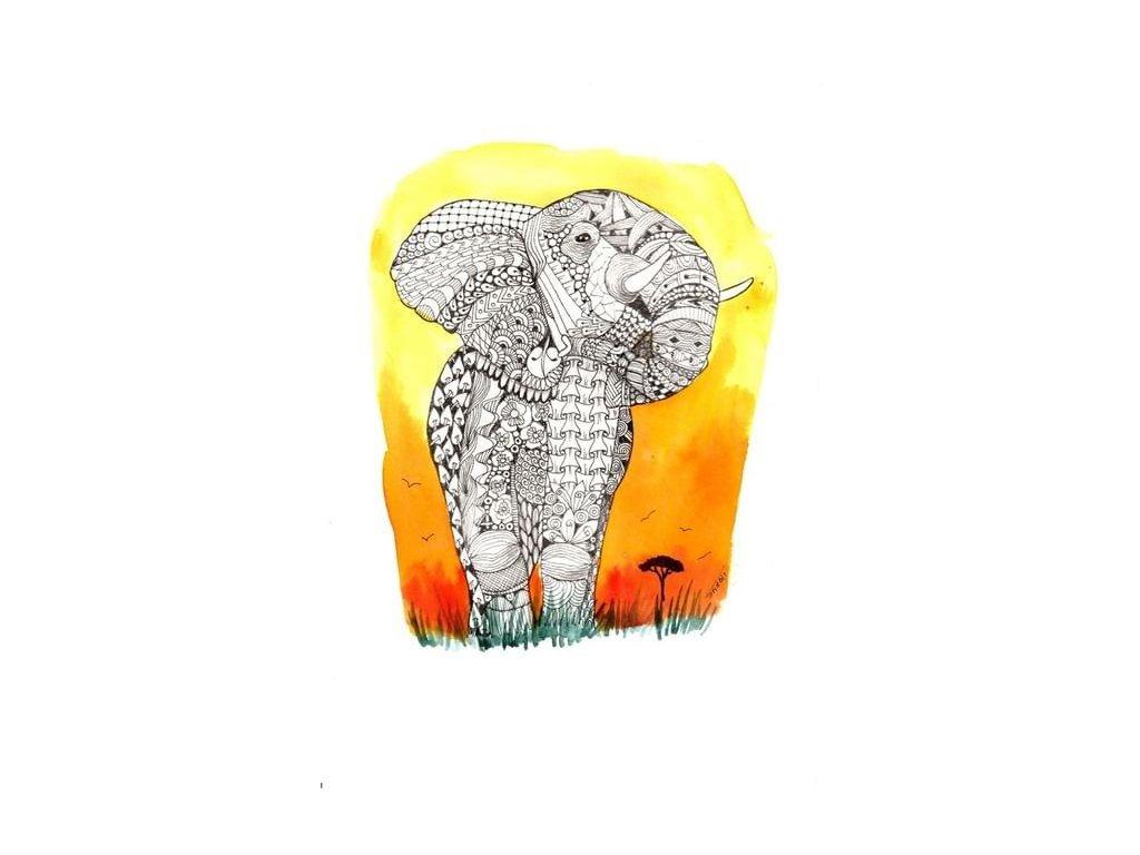 majest slon