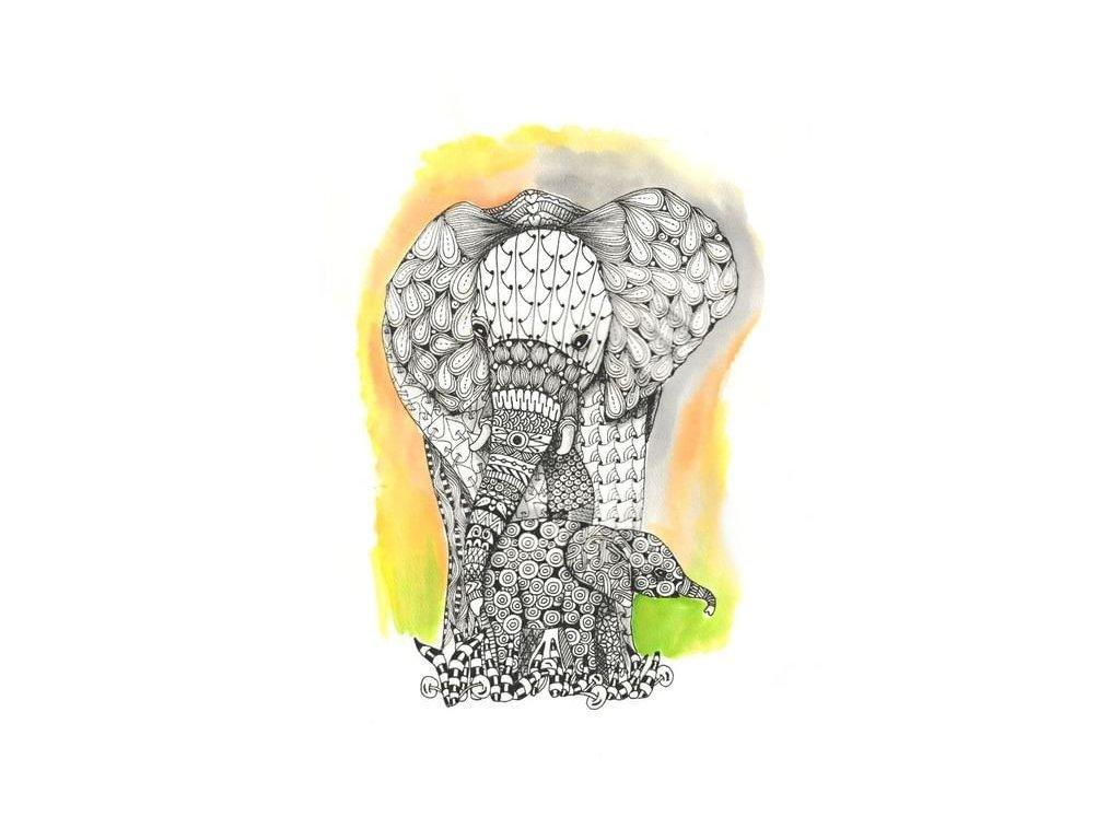 vzorovani sloni