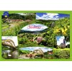 86 pohlednice stechovice