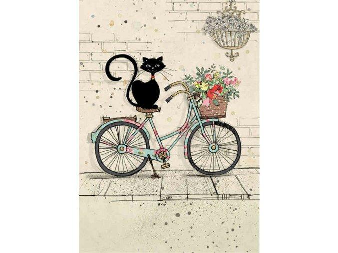 H019 Bike Cat