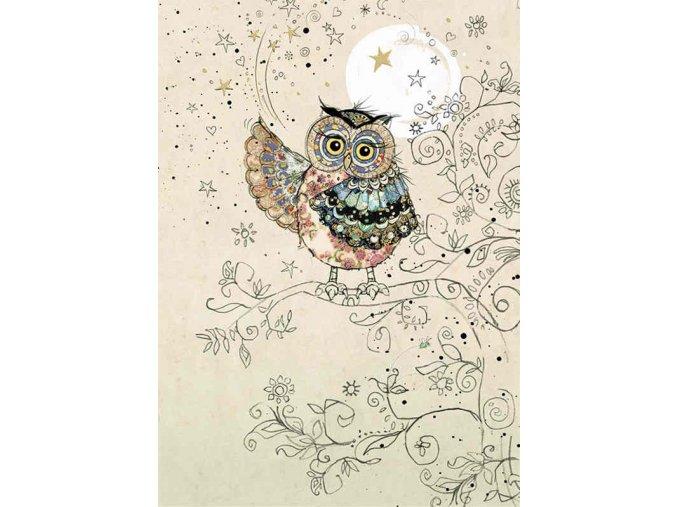 H024 Magical Owl