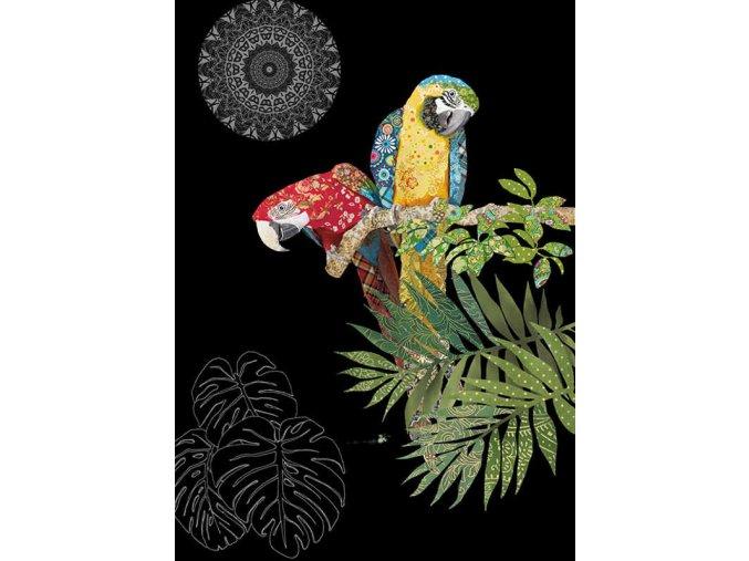 m134 two parrots