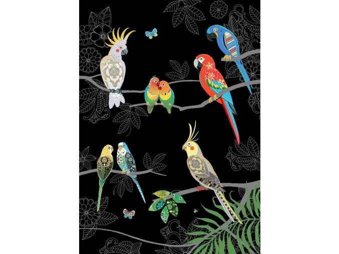 M165 Tropical Birds