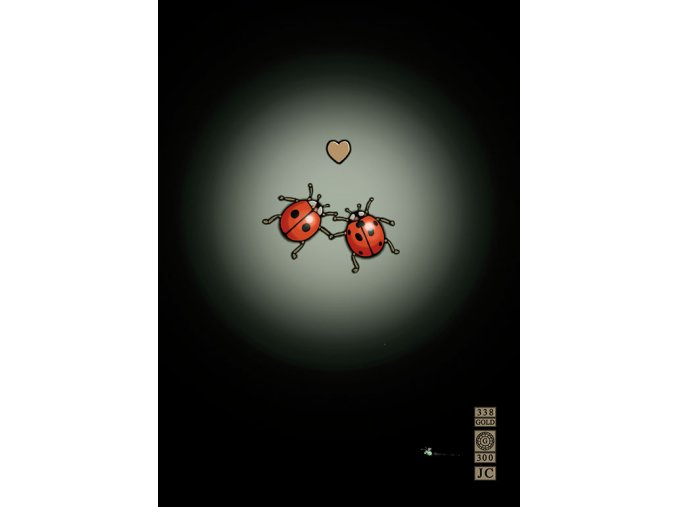 m070 ladybirds in love