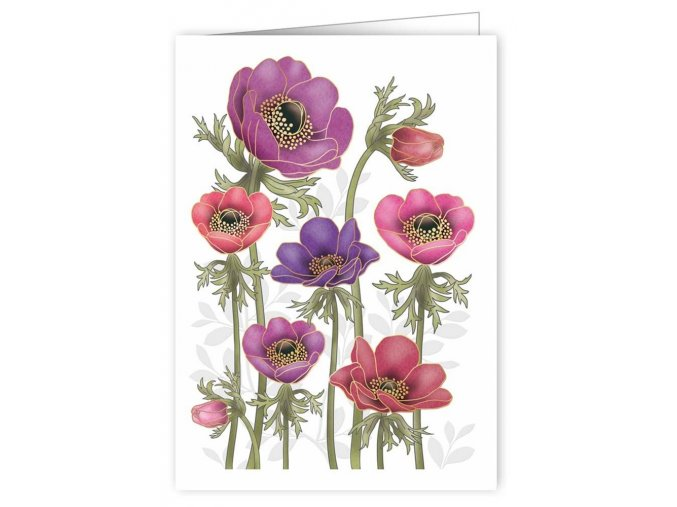 purple poppies 3361