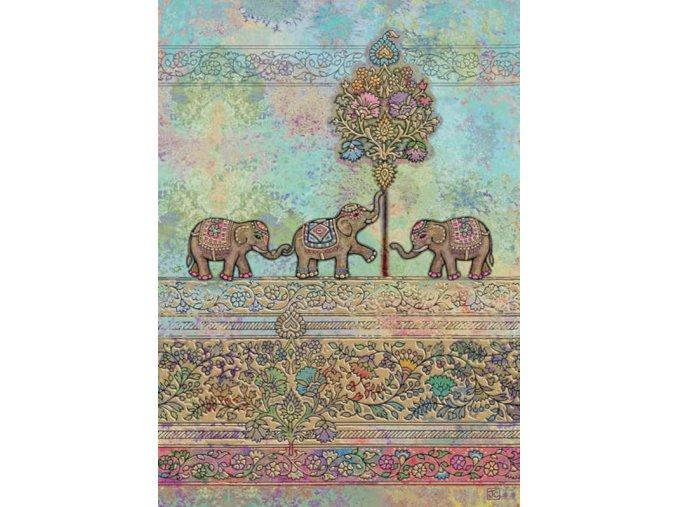 e014 indian elephants