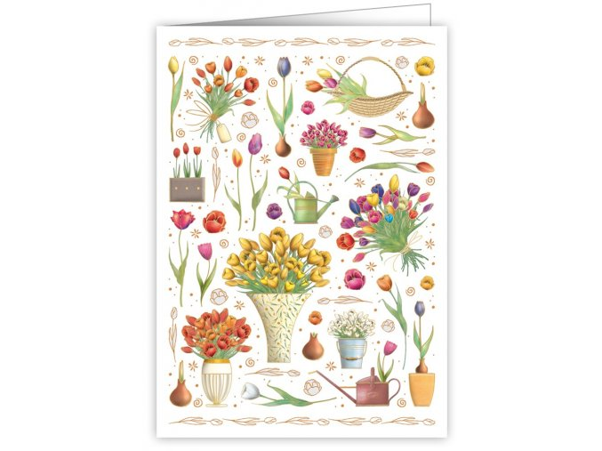 tulips 3295