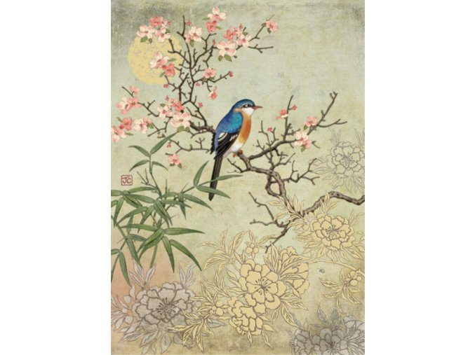 D149 Blossom Bird 1