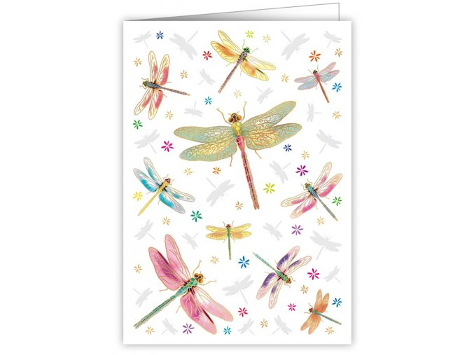 dragonflies 3967