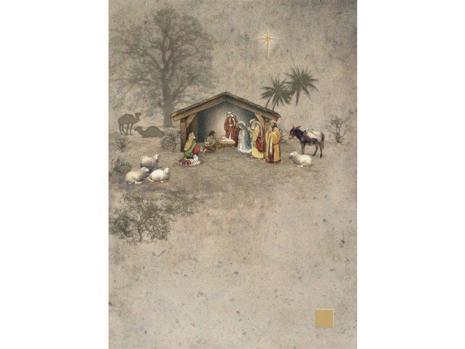 dc011 nativity 449x630