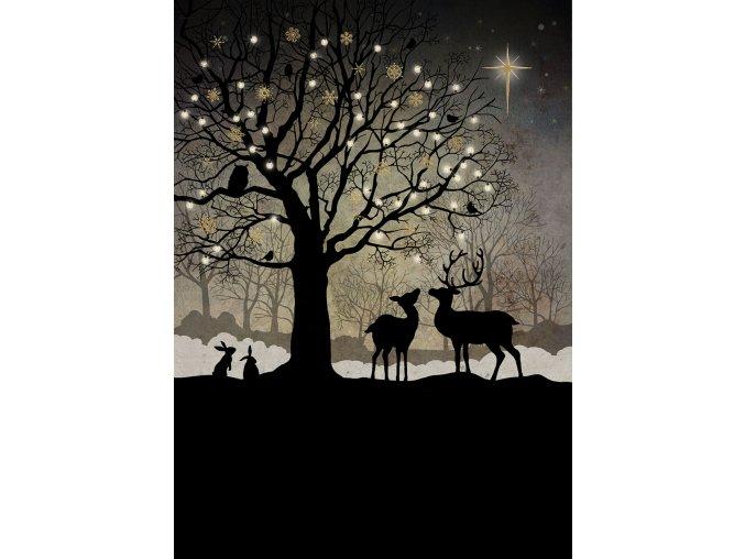 MC039 Christmas Woodland