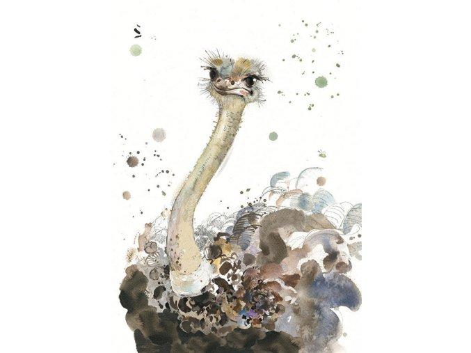 F010 Ostrich2