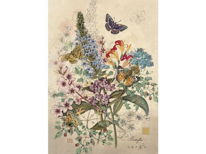 d162 botannical butterflies