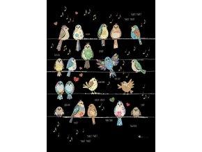 m136 bird tweets