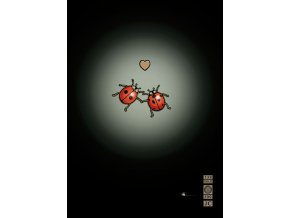 m070 ladybirds in love