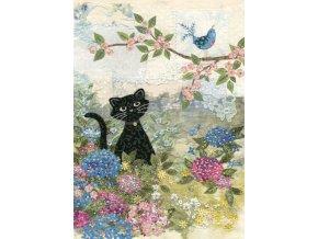 a017 garden cat