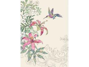 B012 Lily Hummingbird 1