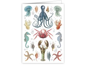 sea critters 3294