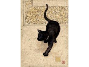 d064 black cat