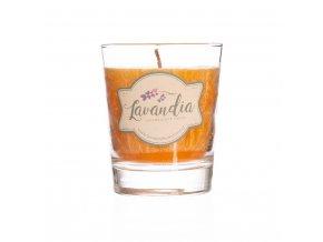 Vonná verbenová svíčka ve skle 170g BLNC792 BYLINCA