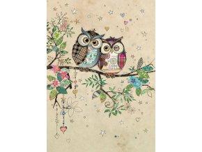 D183 Owl Couple
