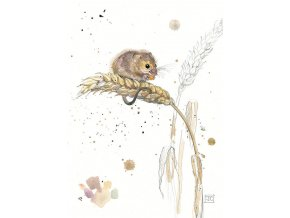 F002 Harvest Mouse2