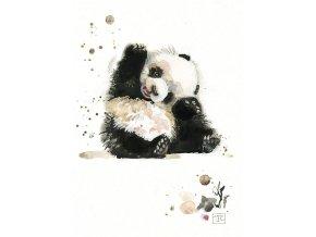 F003 Baby Panda2