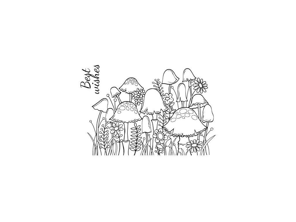 razítko gelové silikonové Houby a květiny