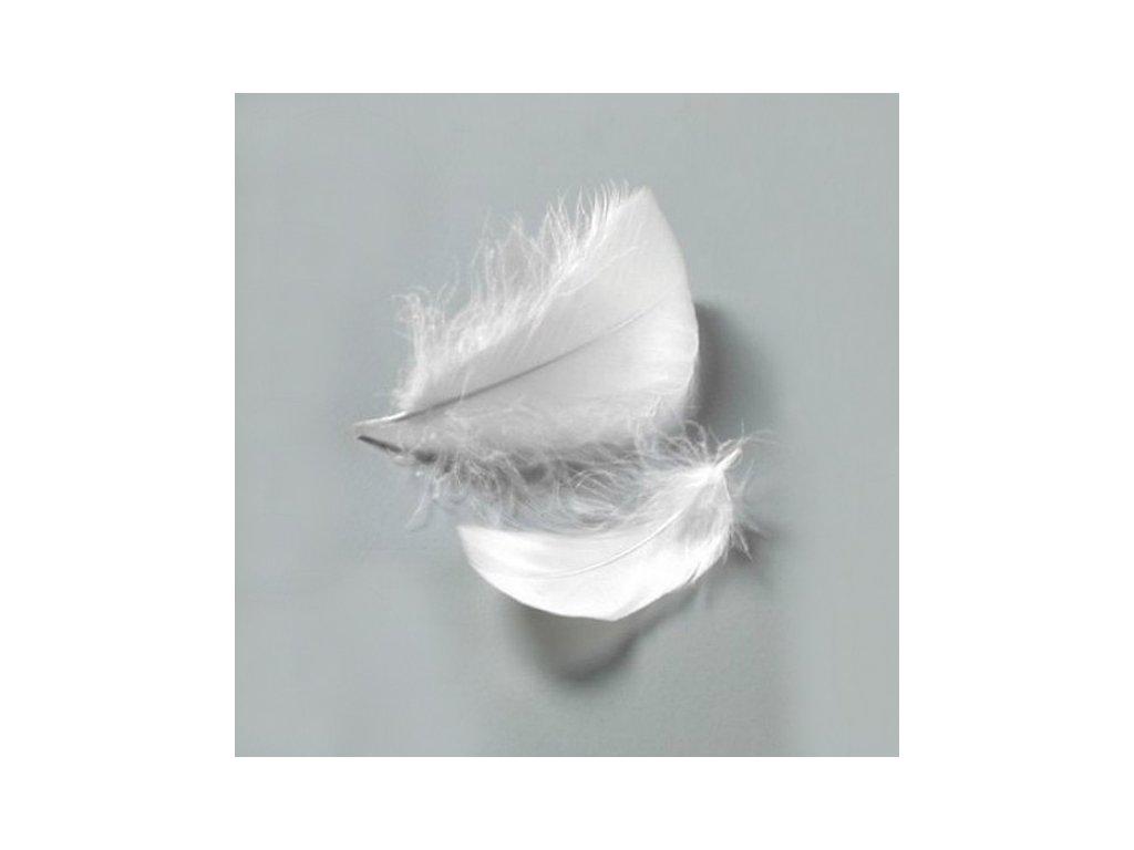 Peříčka bílá cca 110 ks