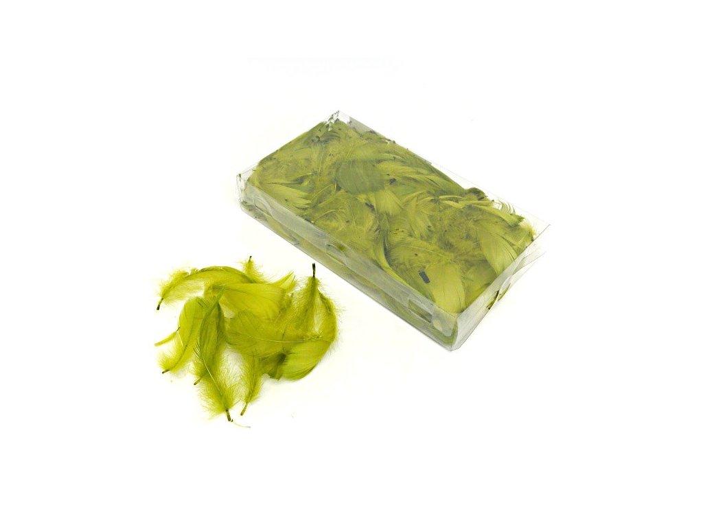 Peříčka olivová 3g