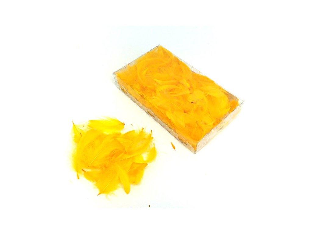 Peříčka žlutá 3g