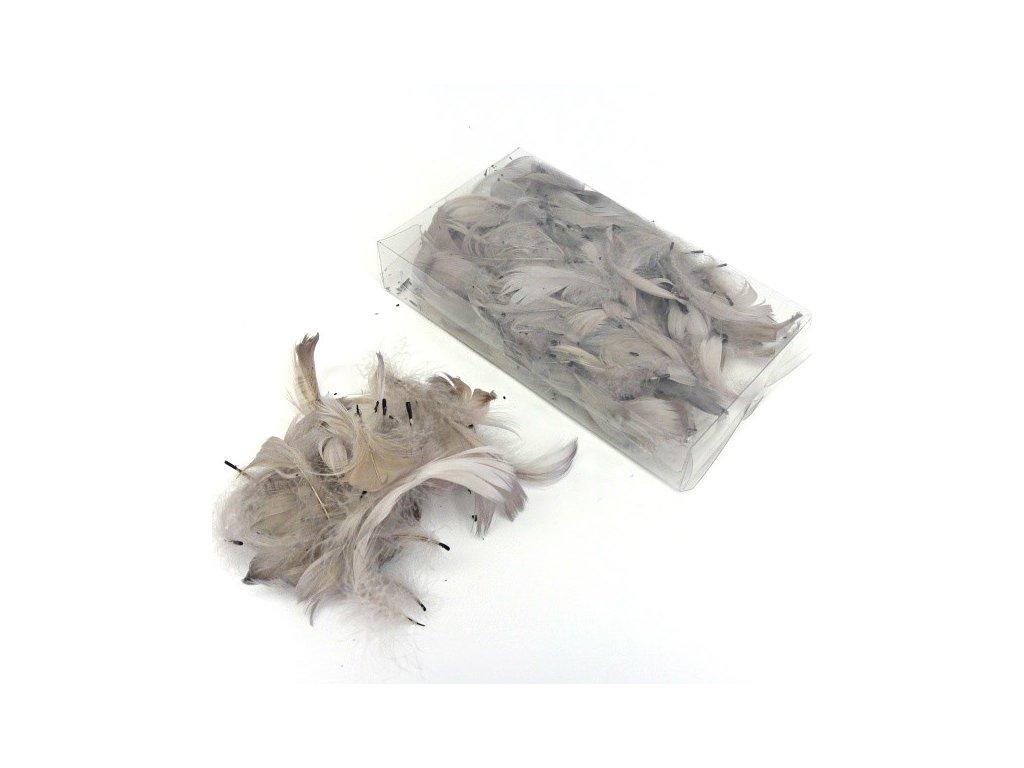 Peříčka šedá 3g