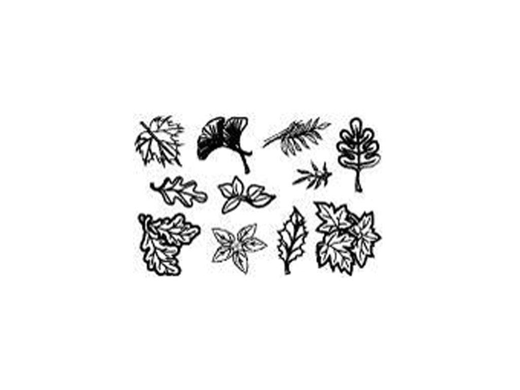Gelová silikonová razítka Listy