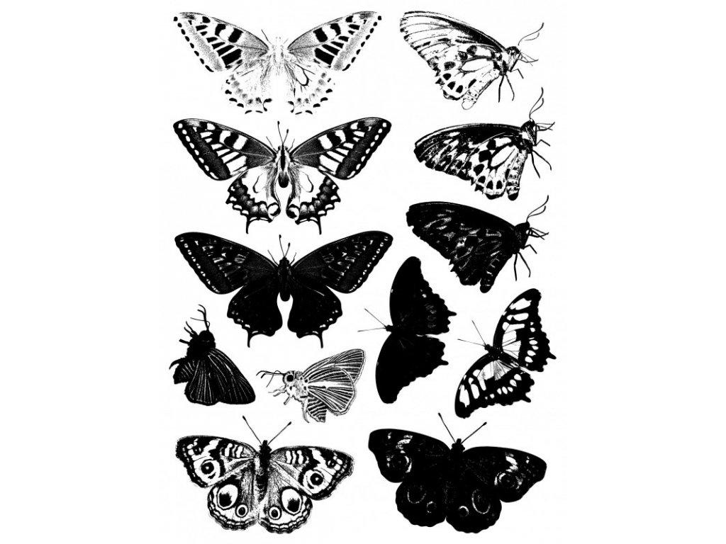 Silikonová gelová razítka Motýli