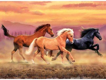 Malování podle čísel Běžící koně