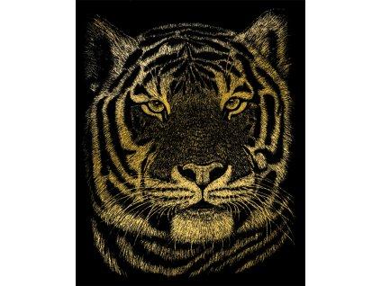 GOLF23 škrábací zlacený obrázek bengálský tygr
