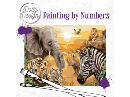 DDp1001 malování podle čísel Safari