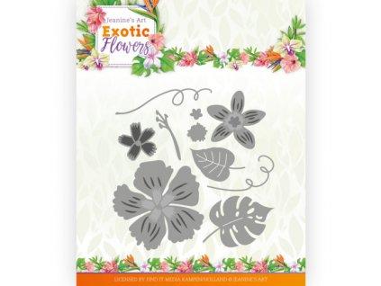 Šablona kovová vyřezávací Květy a listy