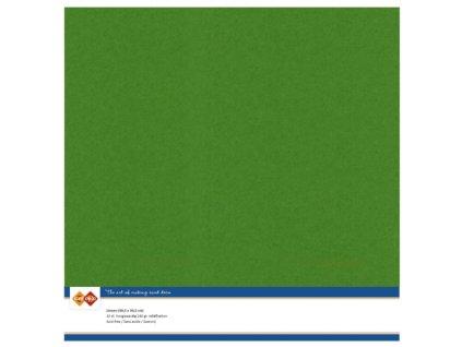 Barevný papír texturovaná čtvrtka kapradina zelená 30x30cm