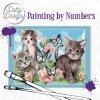 Malování podle čísel na plátno Koťátka