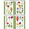 Fólie na okna travička a květinky 886, 42x30cm