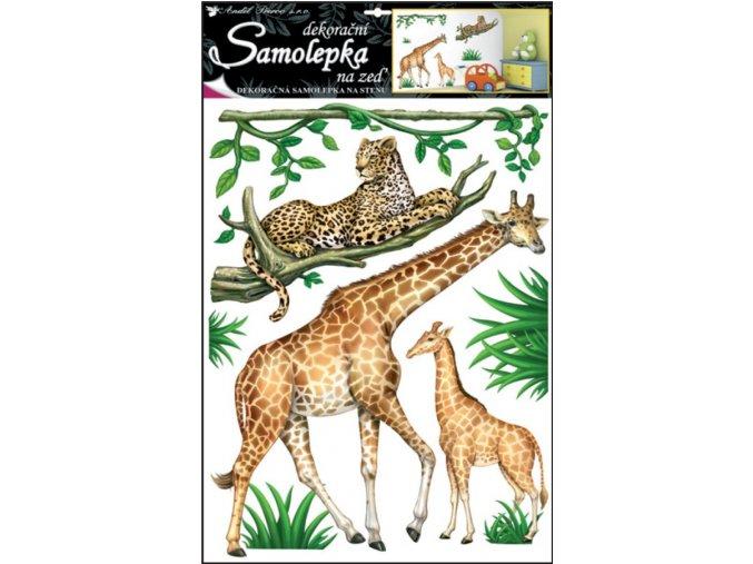 Samolepky na zeď safari 10143 ,  69x42cm
