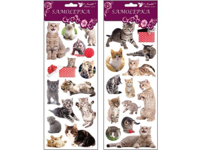 Samolepky kočky 34,6x 12,8 cm , 1250