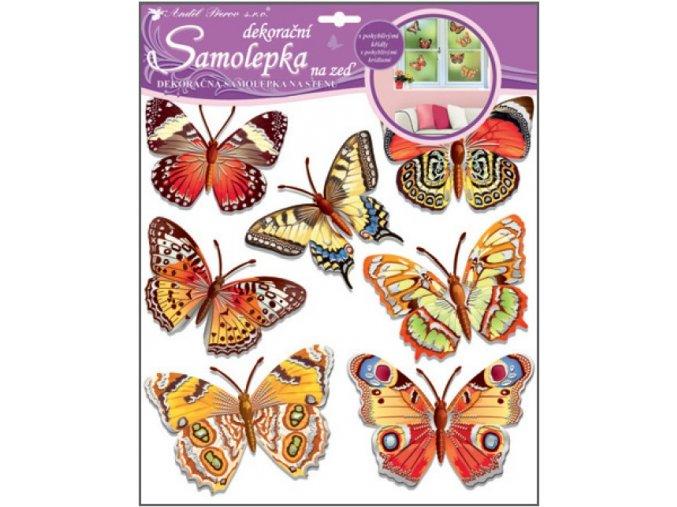 Samolepky na zeď motýli skuteční 38x31 cm 10161