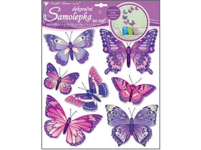 Samolepky na zeď motýli fialoví 38x31 cm 10162