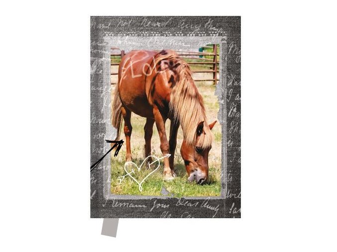 Památník 14x18 cm, 80 l., čistý Kůň