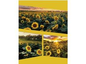 Fotoalbum samolepící DRS-30 Native 1 žluté