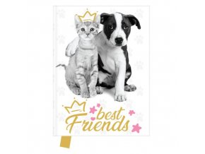 Památník 14x18 cm, 80 l., čistý best Friends