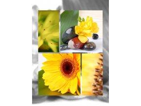 Fotoalbum 9x13/200foto B-35200 Art gerbera