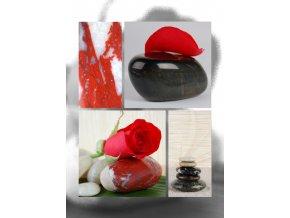 Fotoalbum 9x13/200foto B-35200 Art růže